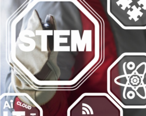 Towards the next STEM action plan