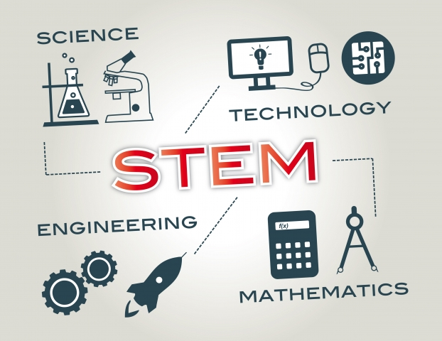 Career paths and outcomes of STEM students